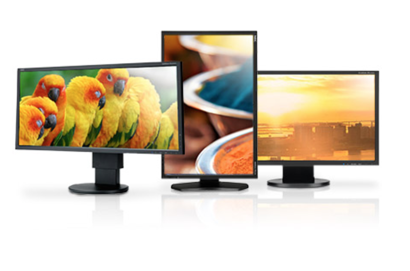 Monitore und Displays